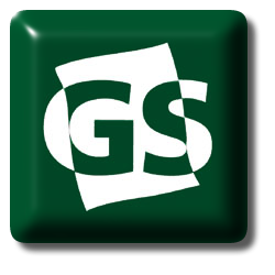 GSLogo 2