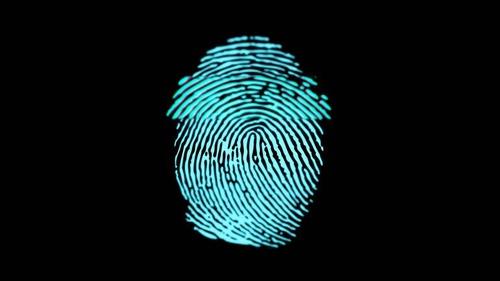 https%3A%2F%2Fd1sr9z1pdl3mb7.cloudfront.net%2Fwp content%2Fuploads%2F2018%2F08%2F15150741%2FAutomated Fingerprint Identification System AFIS